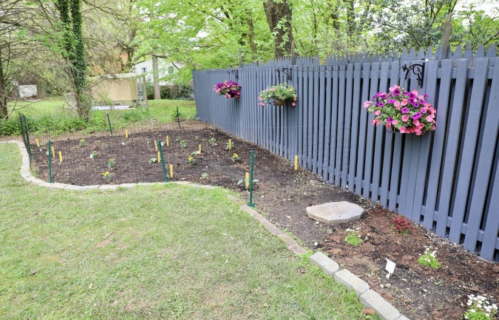 Fence Painting Auckland